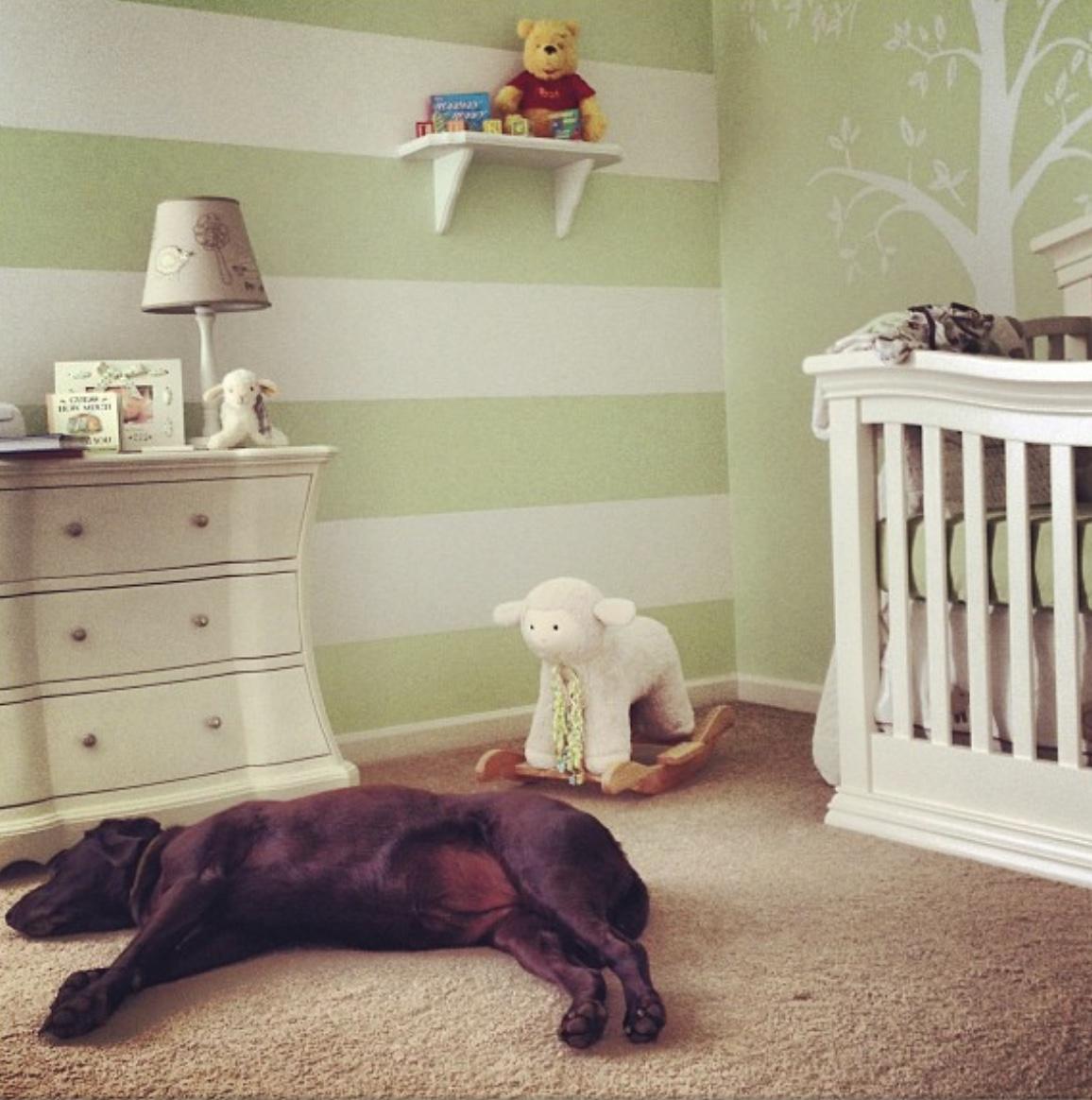 Lamb Nursery